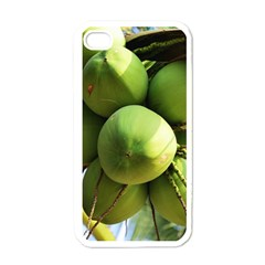 Coconuts 1 Apple Iphone 4 Case (white) by trendistuff