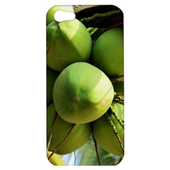 Coconuts 1 Apple Iphone 5 Hardshell Case by trendistuff