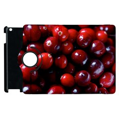Cranberries 1 Apple Ipad 2 Flip 360 Case by trendistuff