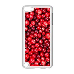 Cranberries 2 Apple Ipod Touch 5 Case (white) by trendistuff