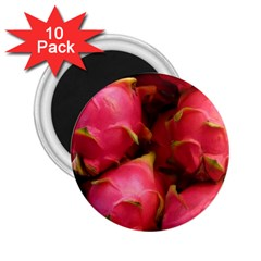 Dragonfruit 2 25  Magnets (10 Pack)  by trendistuff
