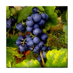 Grapes 1 Tile Coasters by trendistuff