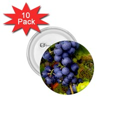 Grapes 1 1 75  Buttons (10 Pack) by trendistuff
