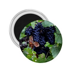 Grapes 3 2 25  Magnets by trendistuff