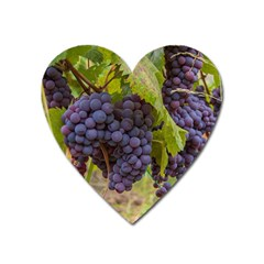 Grapes 4 Heart Magnet by trendistuff