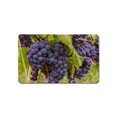 Grapes 4 Magnet (name Card) by trendistuff