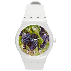 Grapes 4 Round Plastic Sport Watch (m)