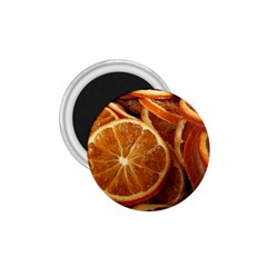 Oranges 5 1 75  Magnets by trendistuff
