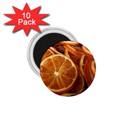 Oranges 5 1 75  Magnets (10 Pack)  by trendistuff