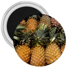 Pineapple 1 3  Magnets by trendistuff