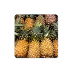 Pineapple 1 Square Magnet by trendistuff