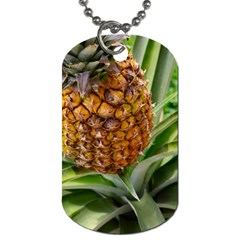 Pineapple 2 Dog Tag (two Sides) by trendistuff