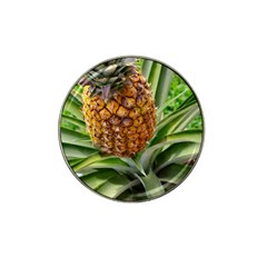 Pineapple 2 Hat Clip Ball Marker (4 Pack) by trendistuff