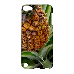 Pineapple 2 Apple Ipod Touch 5 Hardshell Case by trendistuff
