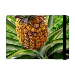 Pineapple 2 Apple Ipad Mini Flip Case by trendistuff