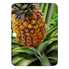 Pineapple 2 Samsung Galaxy Tab 3 (10 1 ) P5200 Hardshell Case  by trendistuff