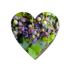 Grapes 2 Heart Magnet by trendistuff