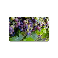 Grapes 2 Magnet (name Card) by trendistuff