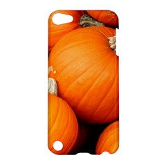 Pumpkins 1 Apple Ipod Touch 5 Hardshell Case by trendistuff