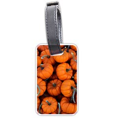 Pumpkins 2 Luggage Tags (one Side)  by trendistuff