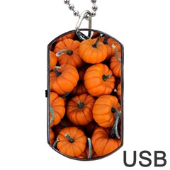 Pumpkins 2 Dog Tag Usb Flash (one Side) by trendistuff