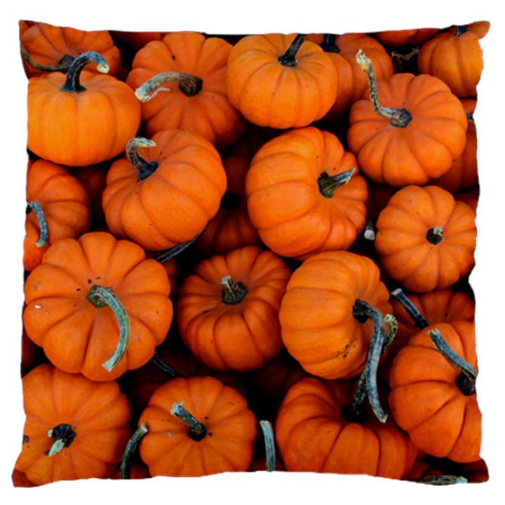 PUMPKINS 2 Large Cushion Case (One Side)