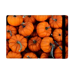 Pumpkins 2 Ipad Mini 2 Flip Cases by trendistuff