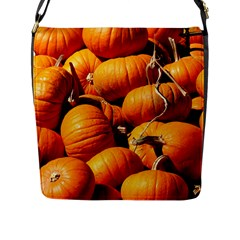 Pumpkins 3 Flap Messenger Bag (l)  by trendistuff