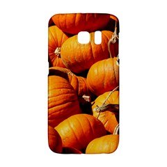Pumpkins 3 Galaxy S6 Edge by trendistuff