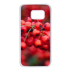 Red Berries 1 Samsung Galaxy S7 White Seamless Case