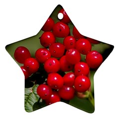 Red Berries 2 Star Ornament (two Sides) by trendistuff