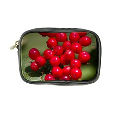 Red Berries 2 Coin Purse by trendistuff
