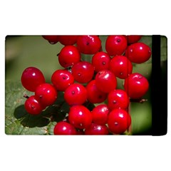Red Berries 2 Apple Ipad 2 Flip Case by trendistuff