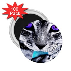 Purple Eyes Cat 2 25  Magnets (100 Pack)  by augustinet