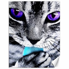 Purple Eyes Cat Canvas 18  X 24   by augustinet
