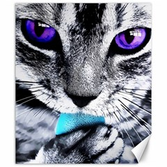 Purple Eyes Cat Canvas 20  X 24   by augustinet