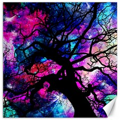 Star Field Tree Canvas 20  X 20   by augustinet