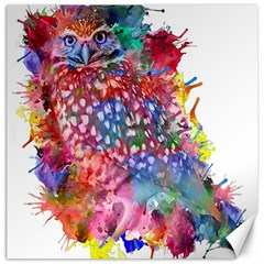 Rainbow Owl Canvas 20  X 20   by augustinet
