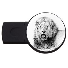 Lion Wildlife Art And Illustration Pencil Usb Flash Drive Round (2 Gb)