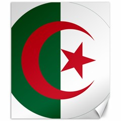 Roundel Of Algeria Air Force Canvas 20  X 24   by abbeyz71