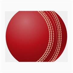 Cricket Ball Small Glasses Cloth by Sapixe