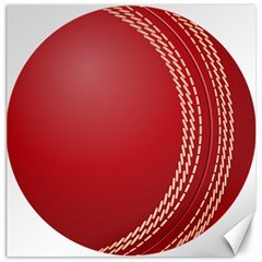 Cricket Ball Canvas 16  X 16   by Sapixe
