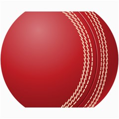 Cricket Ball Canvas 16  X 20   by Sapixe