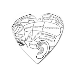 Brain Chart Diagram Face Fringe Heart Magnet by Nexatart