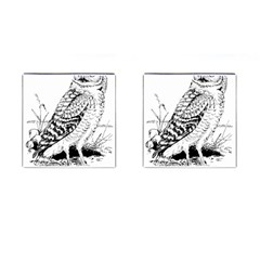 Animal Bird Forest Nature Owl Cufflinks (square) by Nexatart