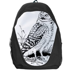 Animal Bird Forest Nature Owl Backpack Bag by Nexatart