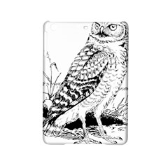 Animal Bird Forest Nature Owl Ipad Mini 2 Hardshell Cases by Nexatart