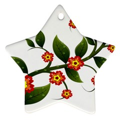 Flower Branch Nature Leaves Plant Star Ornament (two Sides)