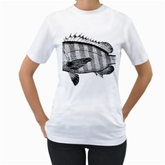 Animal Fish Ocean Sea Women s T Shirt (white) (two Sided) by Nexatart