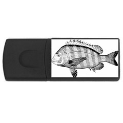 Animal Fish Ocean Sea Rectangular Usb Flash Drive